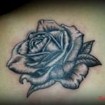 rose tattoo Maine et Loire
