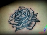 rose tattoo Maine et Loire